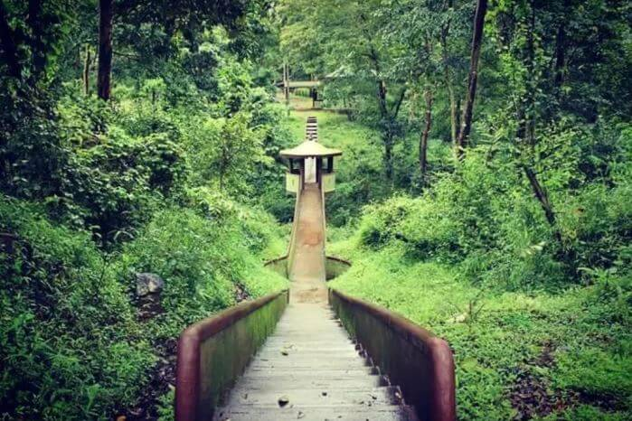 jungle karnataka trip, camping sites