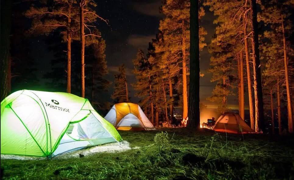 Jungle camping at Gonikoppal, Coorg, camping sites